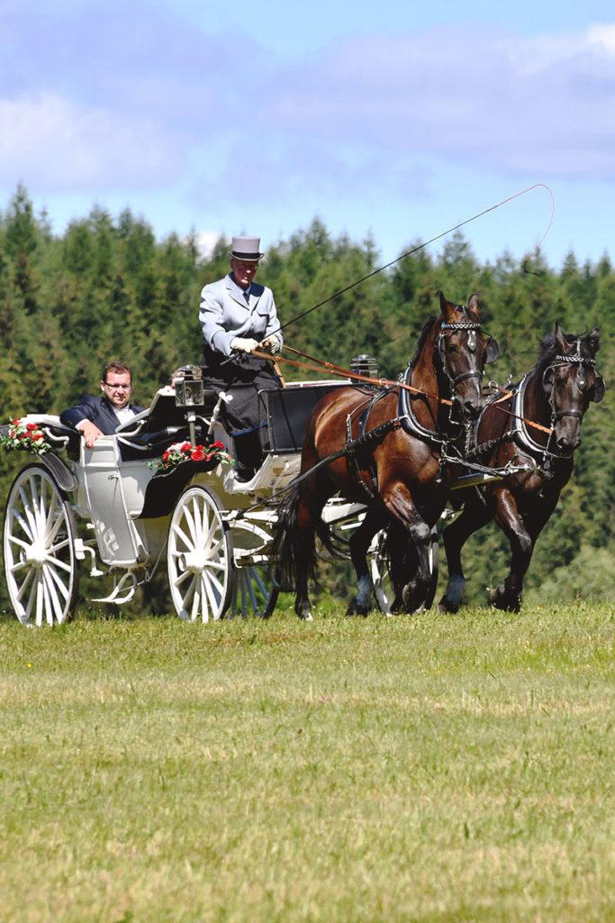 Hochzeitskutsche vom Waldgasthof Bad Einsiedel mieten